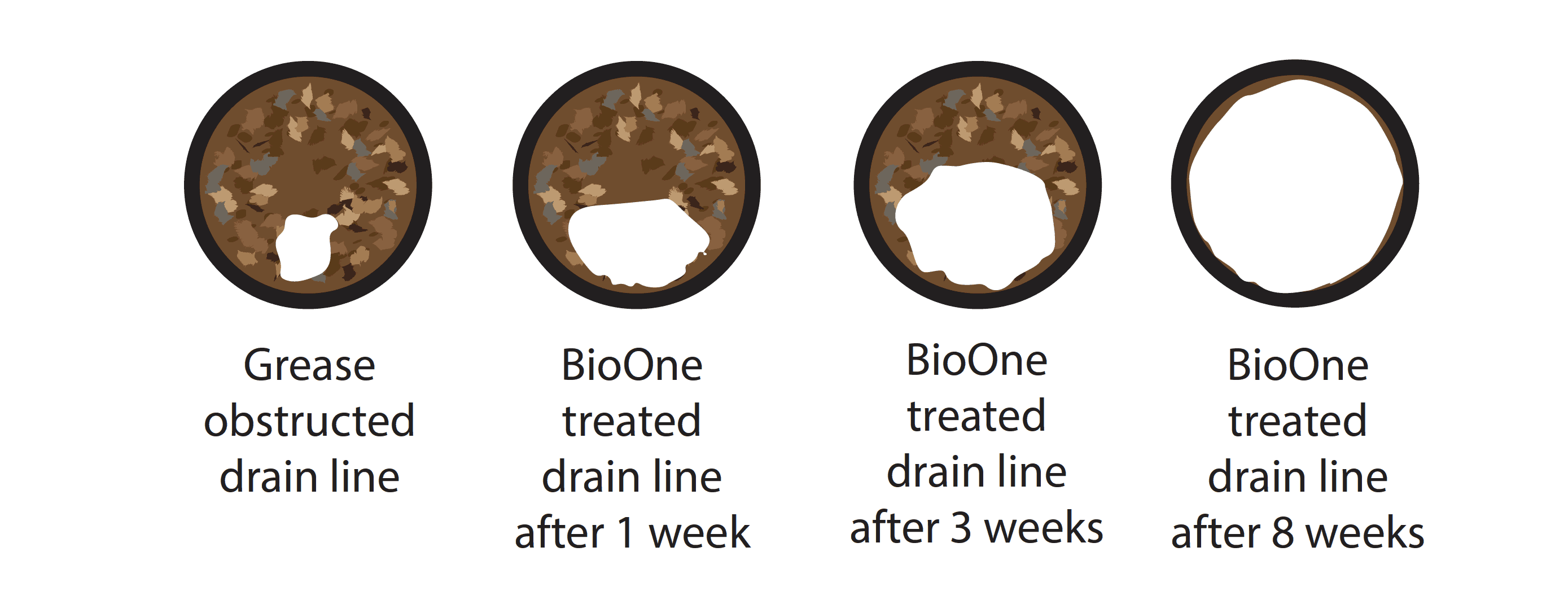 BioOne Drain & Pipe Cleaning